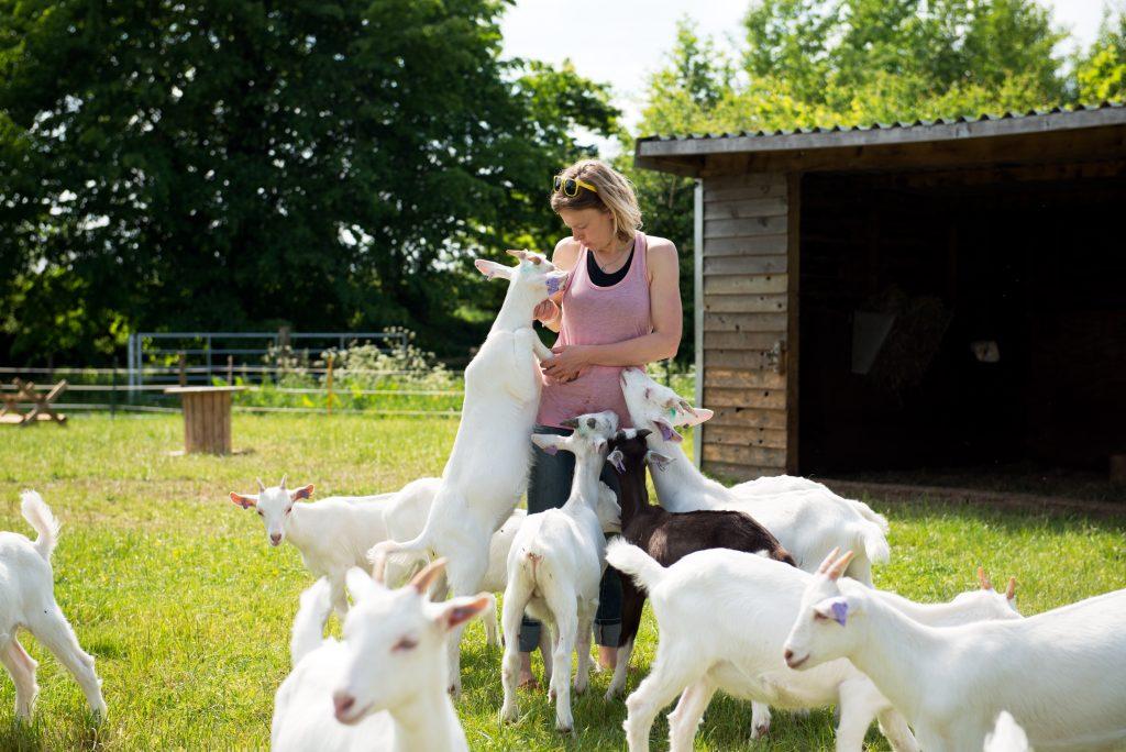 goat consultancy